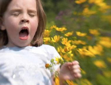 alergija berns
